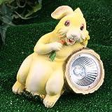 Solar Easter Bunny Spotlight