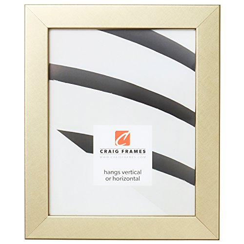 Craig Frames Bauhaus 125 Picture Frame, 24 x 36 inch, Brushe