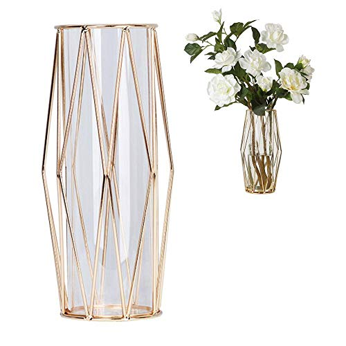 Perfuw Glass Flower Vase with Geometric Metal Rack Stand, Crystal Clear Terrariums Planter Bud Glass Vases for Flowers Hydroponics Plant, Centerpiece for Home Office Wedding - Champagne Gold (Vase Geometric Gold)