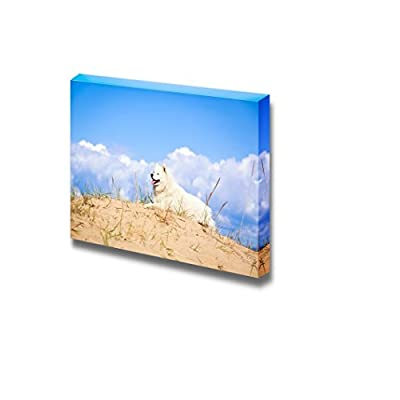 Canvas Prints Wall Art - Samoyed Dog in The Wild | Modern Wall Decor/Home Decoration Stretched Gallery Canvas Wrap Giclee Print & Ready to Hang - 16