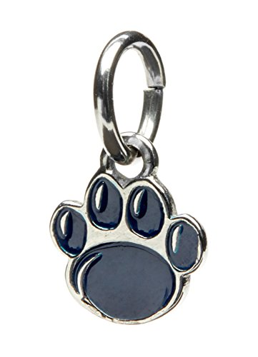 (Penn State Charm | Nittany Lions Paw Dangle Charm | PSU Bracelet | Officially Licensed Penn State University Jewelry | | Nittany Lions Jewelry | Stainless Steel)