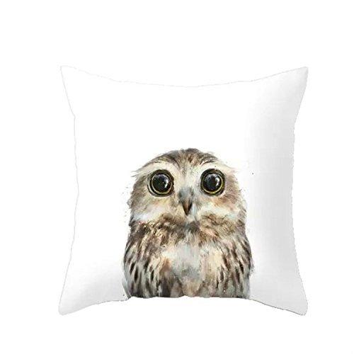 LAZAMYASA Animal Fashion Abstract Pug Dog Cushion Cover Case Pillow Custom Zippered Square Pillowcase 18x18 (one side),Eagle