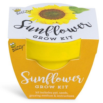 Kit Sunflower (Sunflower Mini Grow Kit by Buzzy)