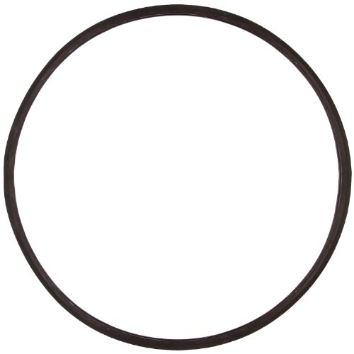 (TCP Global Paint Pressure Pot Tank Lid Replacement Rubber Gasket for 5 Gallon (20 Liter) Paint Pressure Tanks)