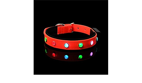 SEA or STAR Collar de Perro con LED Ajustable de Piel Impermeable ...