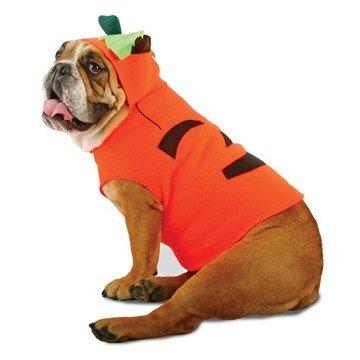 Morris Costumes - Pet Unisex - Zelda - Pumpkin Pet Costume (Pet Large) - Pet One Size]()