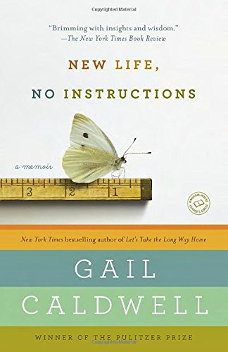 New Life No Instructions Memoir product image