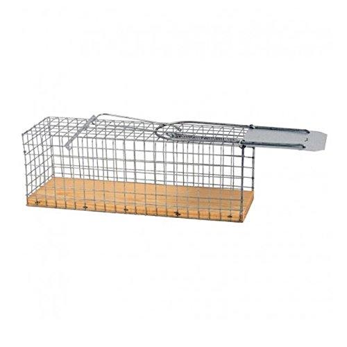 Jaula trampa para ratas, 27.5x9.5x10cm: Amazon.es: Jardín