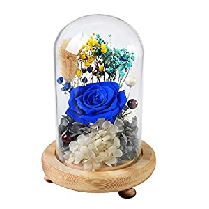 MQ Handmade Preserved Flower Rose Carnation, Eternity Flower in Dome for Home Decor Holiday Party Anniversary Wedding 24