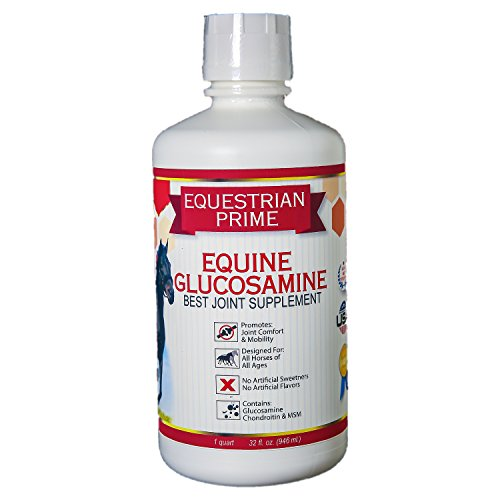 Equestrian Prime-Premium Liquid Equine Glucosamine Chondroitin MSM|Best Joint Supplement for Horses|Anti-Inflammatory|Muscle Support w/ Cartilage Support (32 fl. oz.)