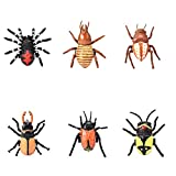 Myoumobi 6 PCS Insect Pull Back Cars Toy Mini Model Toy for 3+