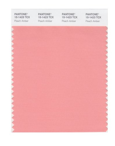 PANTONE Smart 15-1423X Color Swatch Card, Peach -