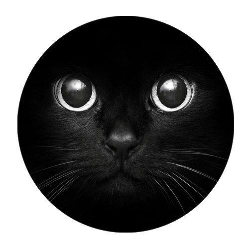 Cute Cat Face Black Fashion Design Circular Mousepad With Rubber - Sunnies Cute