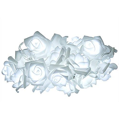 White Rose Led Lights - 2