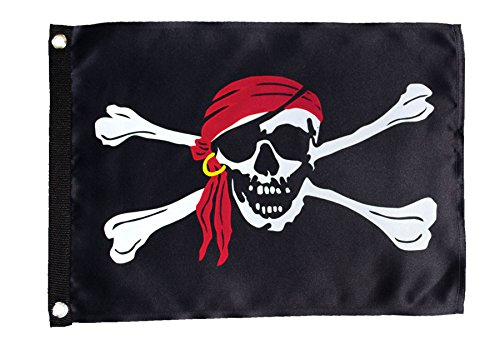 In the Breeze I'm A Jolly Roger Lustre Grommet Flag, 12