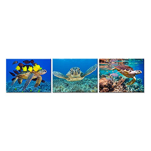 Pictures Animals Ocean - Hello Artwork 3 Pieces Canvas Wall Art Blue Sea Turtle Swimming Ocean Living Series Animal Pictures Print On Canvas For Bathroom Living Room Decor Stretched And Framed Ready To Hang (12x16inchx3pcs)