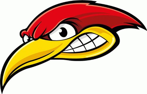Galleon Angry Woodpecker Bird Car Bumper Sticker Decal 6