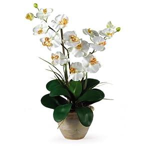 Double Stem Phalaenopsis Silk Orchid Arrangement 90
