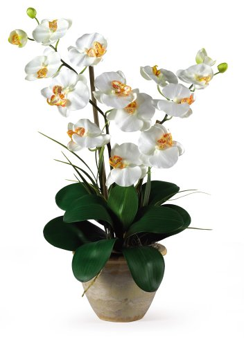 Faux Orchid Arrangement - Double Stem Phalaenopsis Silk Orchid Arrangement