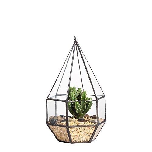 NCYP Six-Surface Diamond Shape Geometric Glass Terrarium Tabletop Succulent Plant Freestanding Hanging Flowerpot, No Plants Included