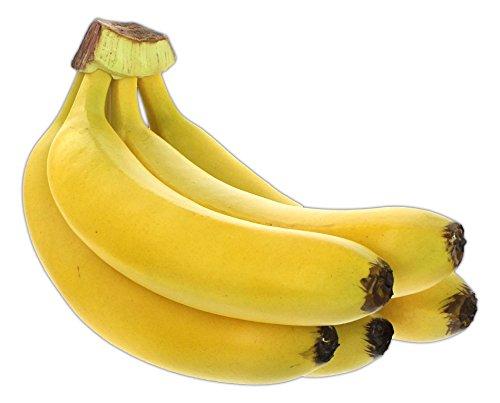 Flora Bunda Banana Bunch Replica Prop (Bunch of 5) (Bananas Of Bunch)