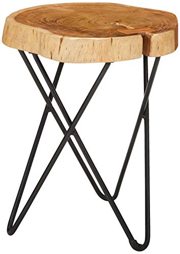 - Bare Decor BARE-ET4516 Sawyer Metal and Tree Trunk Wood End Table, 19