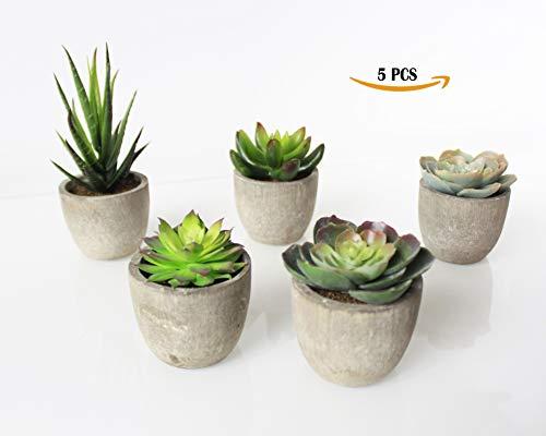 Cheap  SYNI Designs Decorative Potted Artificial Succulent Plants- Assorted Potted Faux Succulent Plants-..