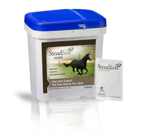Steadfast Equine Joint and Soft Tissue Supplement (60 Packets) by Arenus