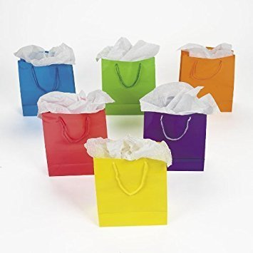 Fun Express Medium Neon Gift Bags, 2-Dozen, 9-Inch Tall