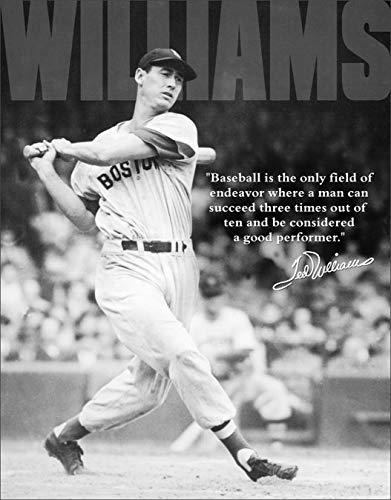 Desperate Enterprises Ted Williams - Baseball Tin Sign, 12.5