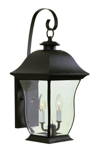 Trans Globe Lighting 4971 BK Outdoor Downing 21.5