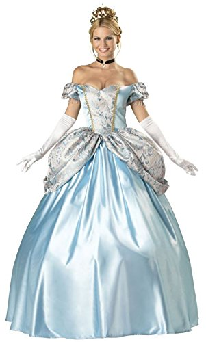 InCharacter Costumes, LLC Women's Enchanting Princess Costume, Blue, -