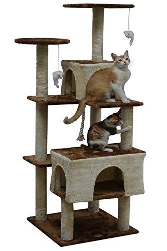with Cat Trees design