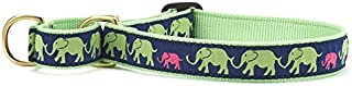 product image for Up Country Leader of The Pach Martingale Dog Collar