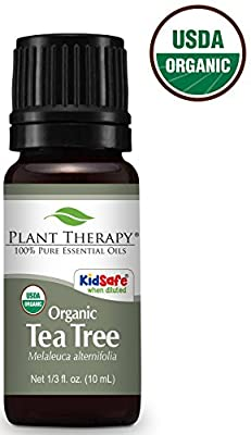 Plant Therapy Tea Tree (Melaleuca) Organic Essential Oil 100% Pure, Undiluted, Therapeutic Grade
