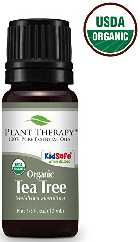Plant Therapy Organic Tea Tree Essential Oil. 100% Pure, 1/3 oz