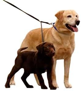 YUP! Double Dog Leash - Two Dog Leash Med-Large, black