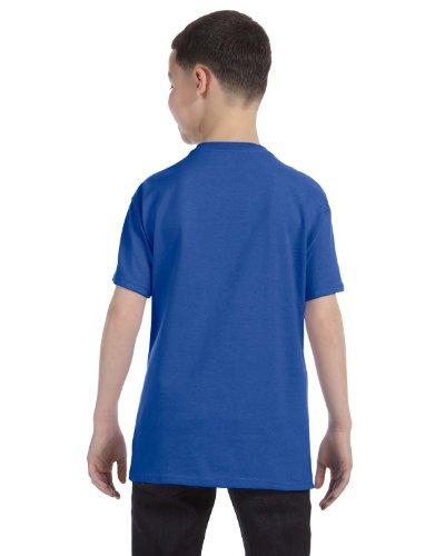 Jerzees Youth 5.6 oz., 50/50 Heavyweight Blend T-Shirt, XL, ROYAL (Heavyweight Jerzees Youth Blend)