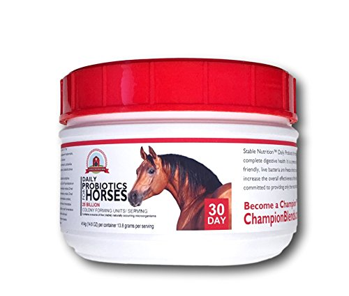 Cheapest Stable Nutrition Probiotics for Horses (30 Day) Check this out.