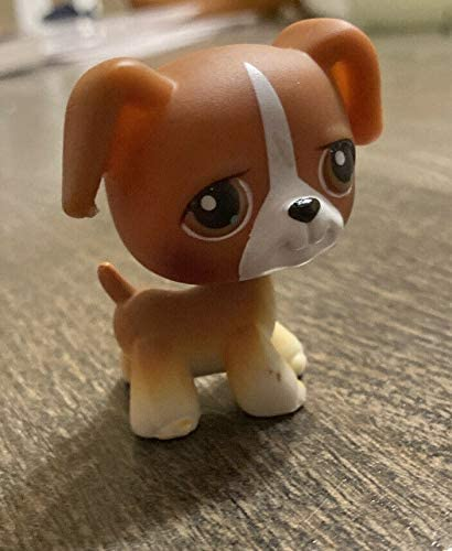 Amazon Com Hasbro Littlest Pet Shop Puppy Boxer Dog 25 White And Brown With Caramel Brown Eyes Lps Loose Figures Replacement Pets Lps Collector Toy Out Of Package Oop Toys Games