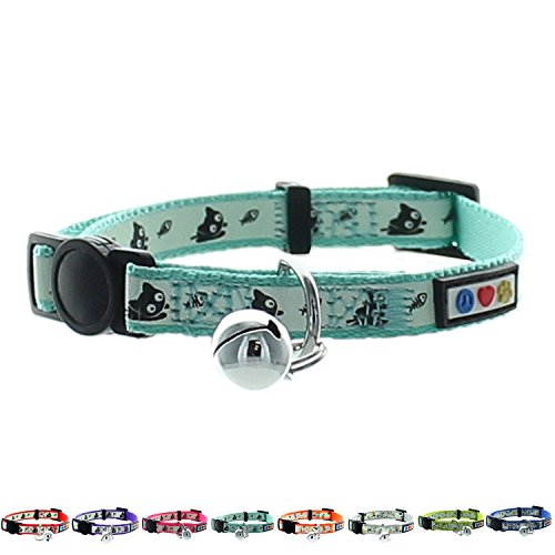 Pawtitas Glow in The Dark Cat Collar with Safety Buckle and Removable Bell Cat Collar Kitten Collar Teal Cat Collar