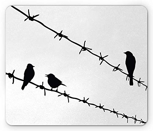 Birds on a Wire Mouse Pad, Black Silhouettes of Three Birds Standing on Barbed Wires Monochrome, Standard Size Rectangle Non-Slip Rubber Mousepad, Black and White,8.66 x 7.08 x 0.118 Inches]()