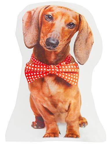 Amazon.com: Tan Doxie – Almohada con forma de perro ...