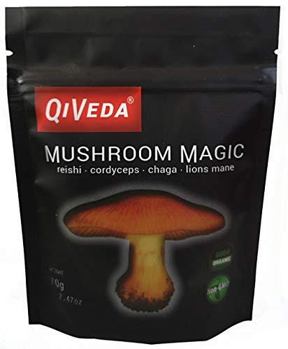 Mushroom Magic (Lions Mane Reishi Cordyceps Chaga) 10x Dual Extract Mushroom Powder   USDA Organic   Extracted from Real Mushrooms, No Filler, Premium Supplement   Add to Coffee/Tea/Smoothie (Best Way To Make Mushroom Tea)