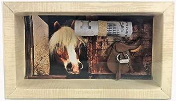 Amazon De Geldgeschenk Gutschein Pferd Reitstunden Reiten Gs020