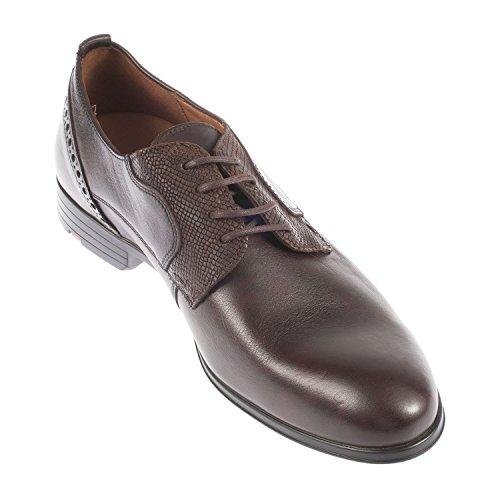 Lloyd - Zapatos de cordones de Otra Piel para hombre COLA/T.D.MORO