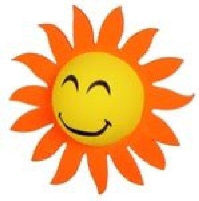 Smiley Sunflower Car Aerial Ball Antenna Topper
