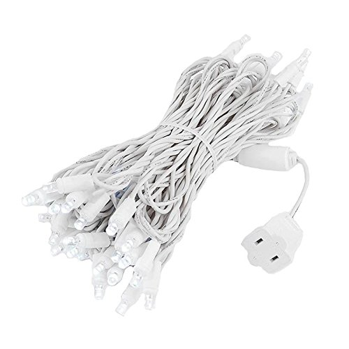 Novelty Lights 50 Light LED Christmas Mini Light Set, Outdoor Lighting Wedding Patio String Lights, Pure White, White Wire, 25 Feet