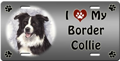 I Love My Border Collie License Plate