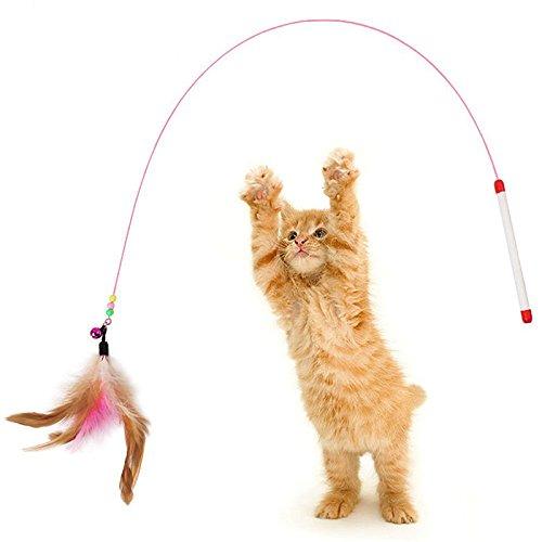 Wicemoon - Caña Larga de Juguete Interactivo para Gatos con ...
